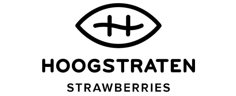Hoogstraten strawberries